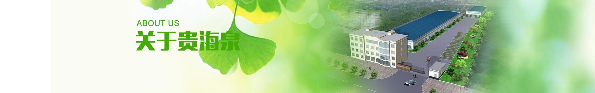 关于贵海泉banner